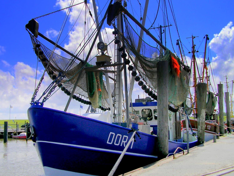 DOR-1-Franke-Foto-Dorum-Hafen k